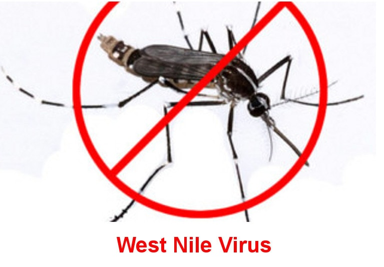 WNV West Nile Virus 2017